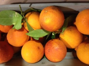 Ojai Blood Oranges